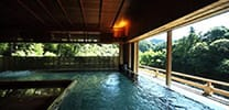 Onsen & Spa Services