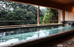 2nd Floor: Komorebi-no-Yu (Dappled Light Bath)