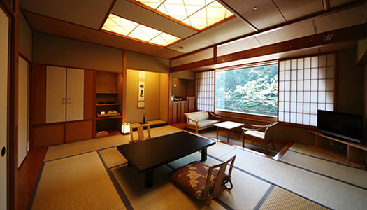 Standard Japanese-style Room (10 tatami mat-size)