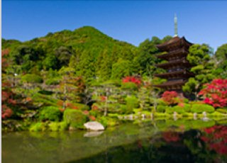 Ruriko-ji Temple (National Treasure)