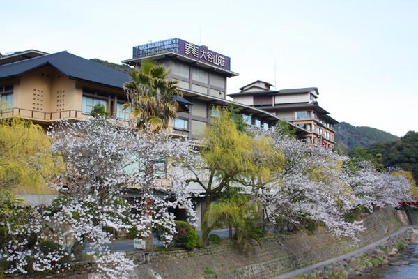 4月6日の桜開花状況をお伝えいたします。