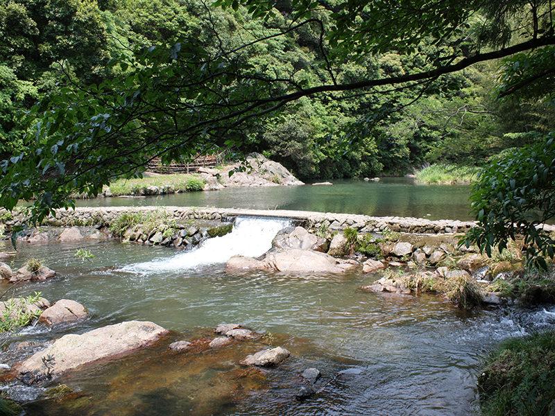 大谷山荘の夏