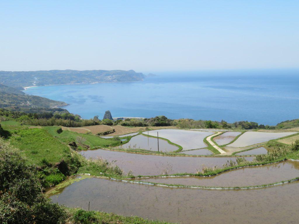 【山口観光】日本の棚田百選に選ばれた「東後畑棚田」(ひがしうしろばたたなだ)。海✕田んぼの絶景棚田を撮影しませんか?