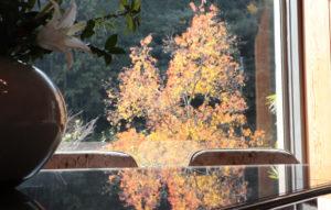山荘の紅葉