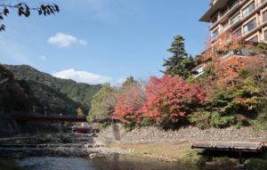 大谷山荘の紅葉