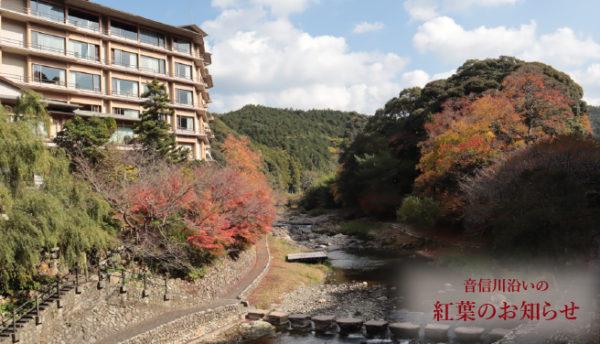 【山口観光】ただ今、大谷山荘は紅葉の見頃です