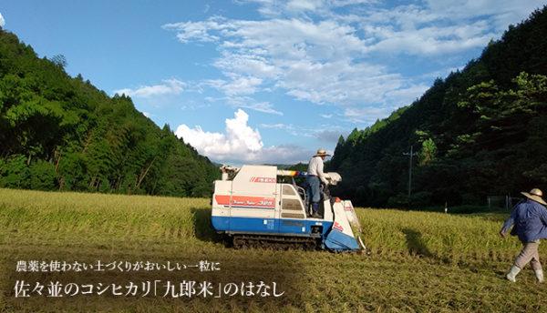 【山口よりみち情報】今年も美味しい「九郎米」の新米が届きました~山口県のコシヒカリ