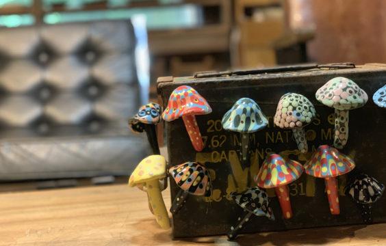 kanekotukasa-atelier-mushroom