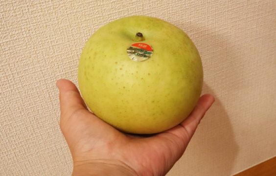autumnfruit-nashi15