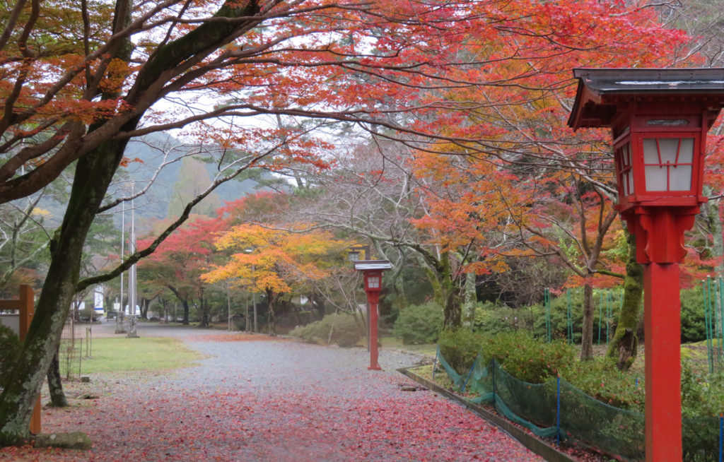 autumnleaves5_taineijitemple