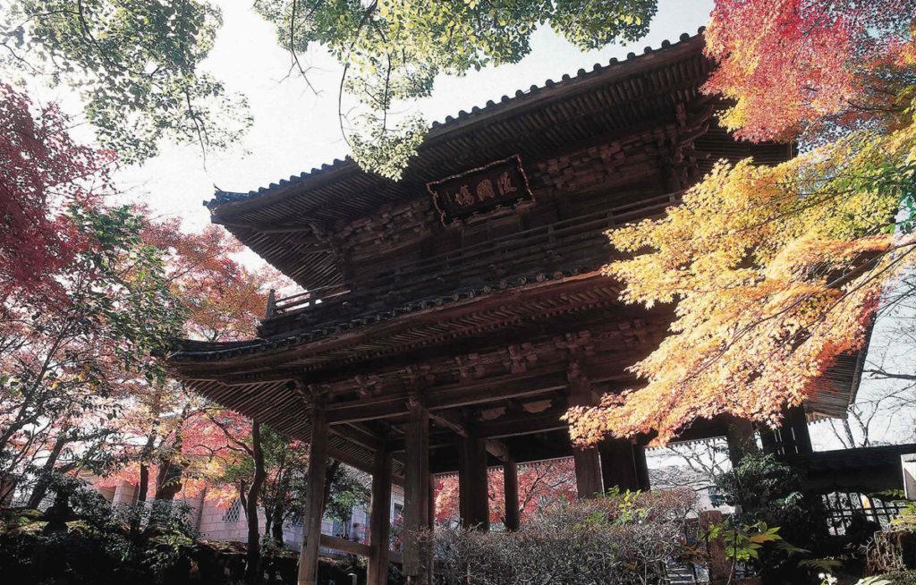 autumnleaves_kouzanji4_oidemaseyamaguchi