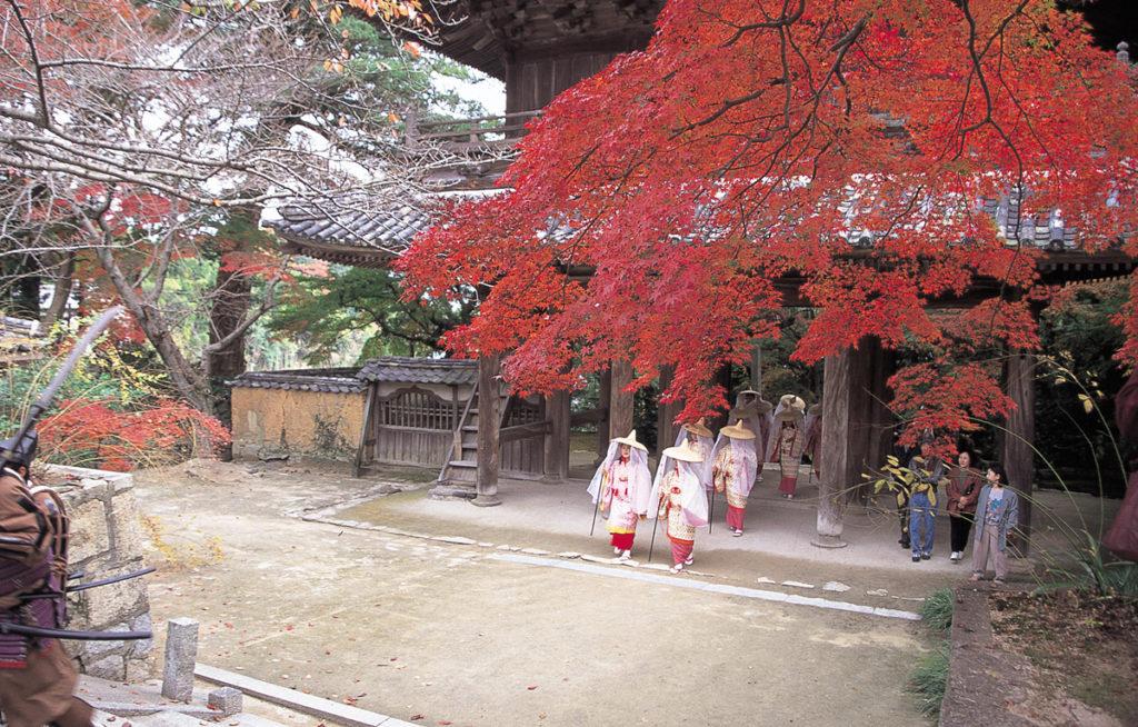 autumnleaves_kouzanji5_oidemaseyamaguchi