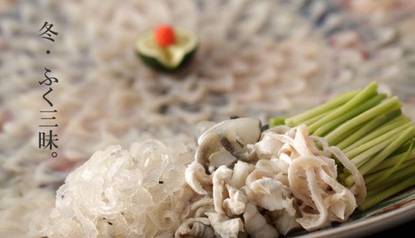 【山口の食】冬期限定。まるごと味わう「とらふくフルコース」ご宿泊プランのご案内(10月~翌3月)