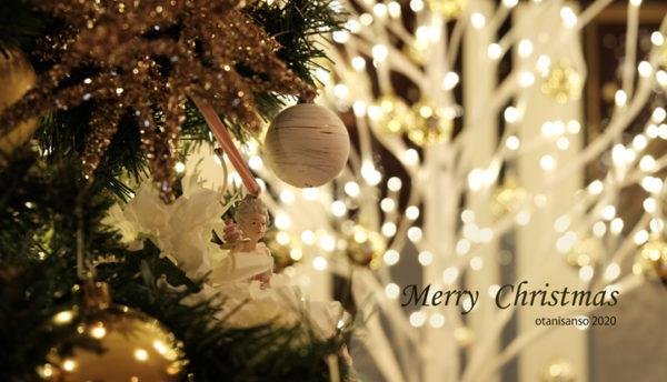 【冬の催し】今年もクリスマスの季節がやってきました。~クリスマス・コーディネート2020